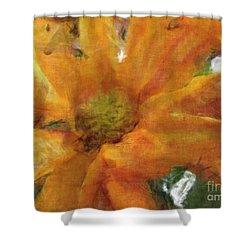 Orange Chrysanthemem Photoart Shower Curtain by Debbie Portwood