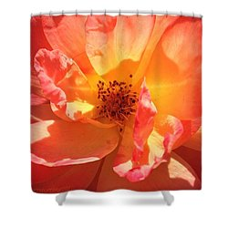 Orange Confection Rose Shower Curtain