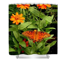 Orange Creatures Shower Curtain by Rodney Lee Williams