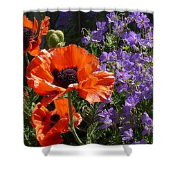 Shower Curtain featuring the photograph Orange Flowers by Alan Socolik