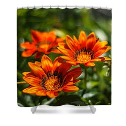 Shower Curtain featuring the photograph Orange Flowers by Jane Luxton