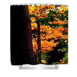 Shower Curtain featuring the photograph Orange Foliage by Denyse Duhaime