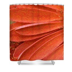 Orange Gerber Daisy Painting Shower Curtain