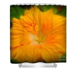 Orange Hibiscus Flower Shower Curtain by Clare Bevan