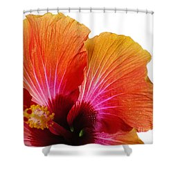 Orange Hibiscus Flower Shower Curtain by Sally Simon