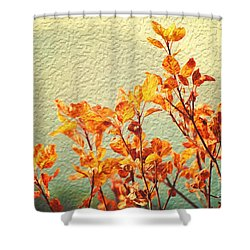 Orange Leaves Shower Curtain by Yew Kwang