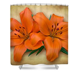 Orange Lily Shower Curtain by Jane McIlroy