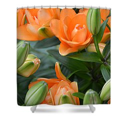Orange Lily Shower Curtain by Tine Nordbred