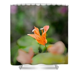 Orange Love Shower Curtain