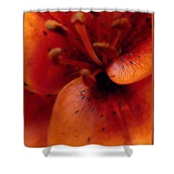Orange Macro Modern Lily Shower Curtain by Danielle  Parent