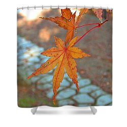 Orange Maple Leaves Shower Curtain by Lorna Hooper