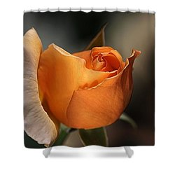 Shower Curtain featuring the photograph Orange Mood by Joy Watson