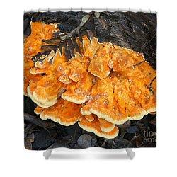 Orange Mushroom Shower Curtain