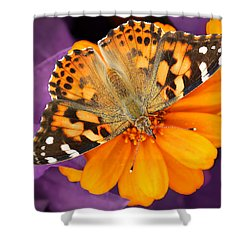 Orange On Purple Shower Curtain