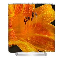 Orange Rain Shower Curtain by Karen Wiles