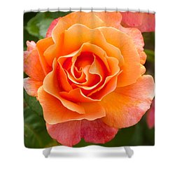 Orange Rose Lillian Shower Curtain