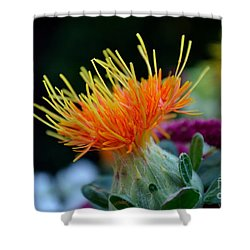 Orange Safflower Shower Curtain
