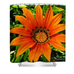 Shower Curtain featuring the photograph Orange Sunshine by Janice Westerberg