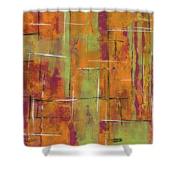 Orange Shower Curtain by Susan Sadoury