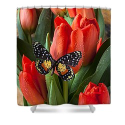 Orange Tulips And Butterfly Shower Curtain by Garry Gay