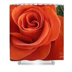 Orange Twist Rose 2 Shower Curtain