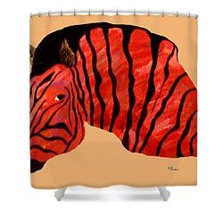 Orange Zebra Shower Curtain by Andrew Petras