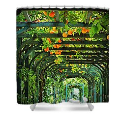 Oranges And Lemons On A Green Trellis Shower Curtain by Brooke T Ryan