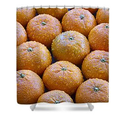 Oranges Shower Curtain by James BO  Insogna