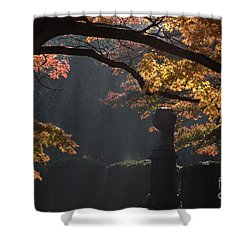 Shower Curtain featuring the photograph Orangish by Steven Macanka
