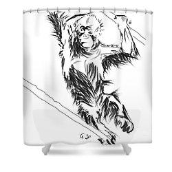 Orangutan 3 Shower Curtain