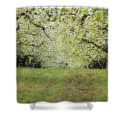 Shower Curtain featuring the photograph Orchard by Patricia Babbitt