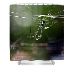 Orchard Web Shower Curtain