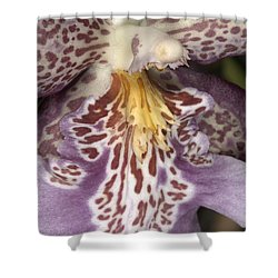 Orchid 483 Shower Curtain