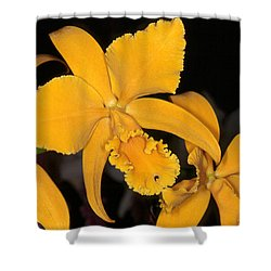Orchid 5 Shower Curtain