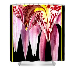 Orchid Abstract Shower Curtain by Rose Santuci-Sofranko