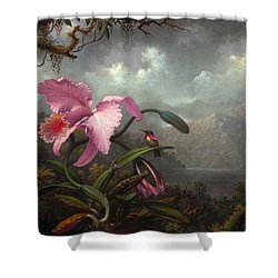 Orchid And Hummingbir Shower Curtain by Martin Johnson Heade