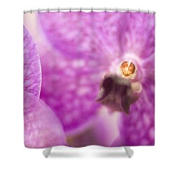 Orchid Shower Curtain by Bradley R Youngberg