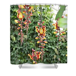 Orchid Falls Shower Curtain by Sonali Gangane