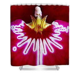 Shower Curtain featuring the photograph Orchid Harlequinn-pansy Orchid by Jennie Breeze