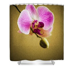 Orchid In Digital Oil Shower Curtain
