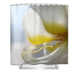 Orchid Melody  Shower Curtain