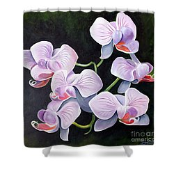 Orchids II Shower Curtain by Debbie Hart