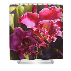 Orchids In Magenta Shower Curtain