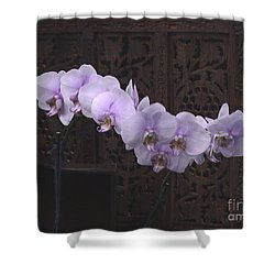 Shower Curtain featuring the photograph Orchids Loretta by The Art of Alice Terrill