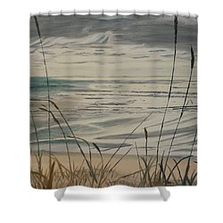 Oregon Coast With Sea Grass Shower Curtain