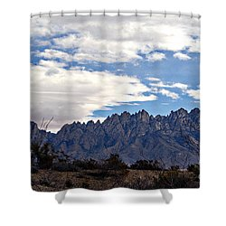Organ Mountain Landscape Shower Curtain by Barbara Chichester