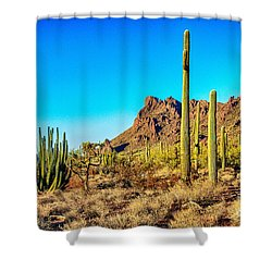 Organ Pipe Cactus National Monument Late Afternoon Shower Curtain by Bob and Nadine Johnston