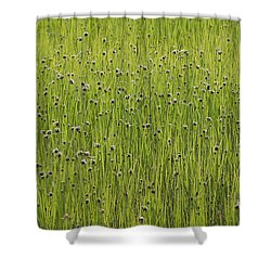 Organic Green Grass Backround Shower Curtain