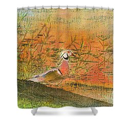 Oriental Duck Shower Curtain by Deborah Benoit