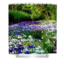 Oriental Ensata Iris Garden Shower Curtain